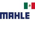 Mahle Saltillo